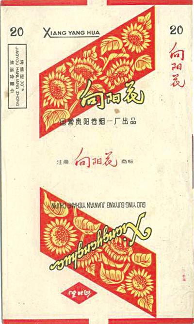 """开在贵州大地上的""""向阳花"""""""