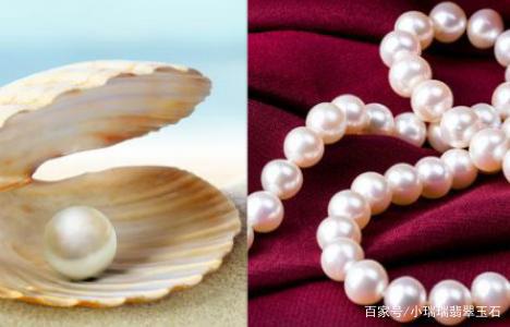 珍珠收藏的保养方法