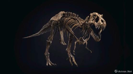 必!须!买!霸王龙化石史丹即将被拍卖
