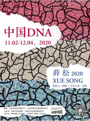 中国DNA:薛松2020