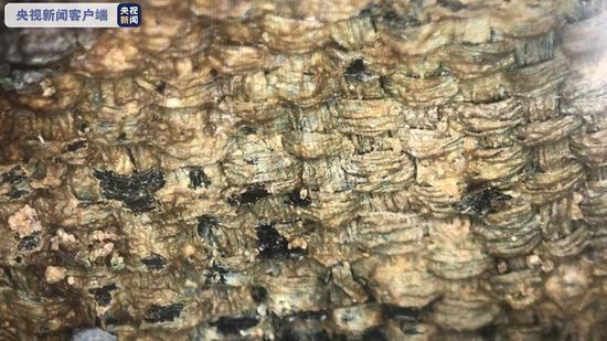 三星堆遗址发现最明显、最大面积的丝绸残留物-中国现代收藏网