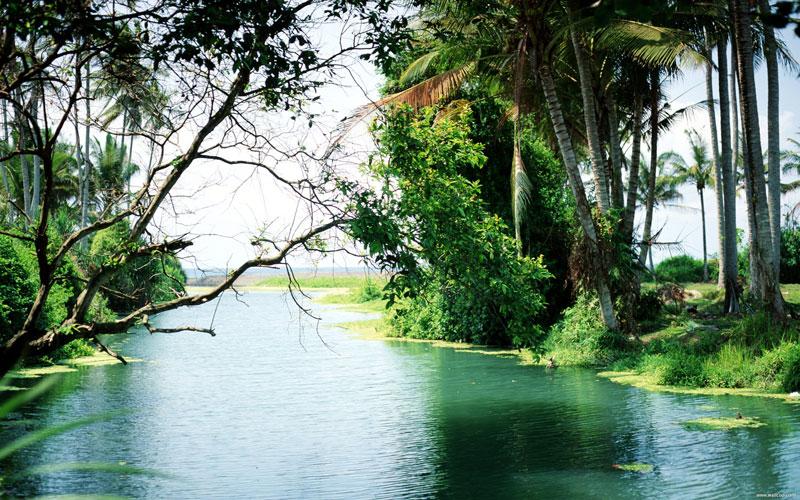 巴厘岛风情